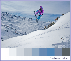 Сноубордный спорт.